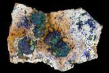 "2.7"" Sparkling Azurite and Malachite Crystal Cluster - Morocco - #128172-1"