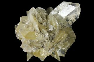 Gypsum var. Selenite - Fossils For Sale - #130296