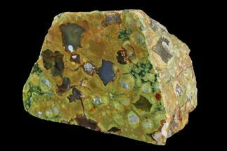 "4"" Polished Rhyolite (Rainforest Jasper) Section - Australia For Sale, #130409"