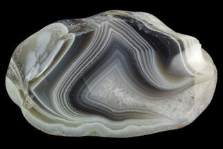 "2.2"" Polished Botswana Agate Nodule - Botswana, Africa For Sale, #130982"