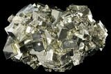 "Large, 6.9"" Cubic Pyrite Crystal Cluster - Peru - #131137-2"