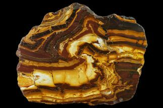 "12.4"" Polished ""Desert Sunset"" Banded Iron Section - Western Australia For Sale, #131165"