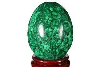 Malachite - Fossils For Sale - #131853
