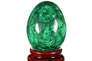 "2.25"" Flowery, Polished Malachite Egg - Congo For Sale, #131870"