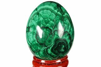 "Buy 1.85"" Flowery, Polished Malachite Egg - Congo - #131890"