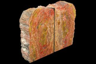"6.7"" Tall, Arizona Petrified Wood Bookends - Red & Yellow For Sale, #131795"