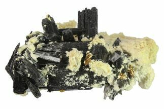 "Buy 3.3"" Black Tourmaline (Schorl) Crystals with Orthoclase - Namibia - #132226"