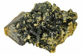 Epidote & Magnetite - Fossils For Sale - #132645