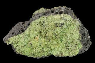 "3.5"" Peridot in Basalt - Arizona For Sale, #132344"