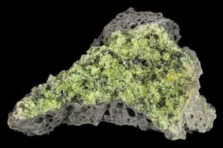 "3.7"" Peridot in Basalt - Arizona For Sale, #132350"