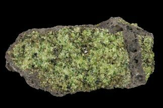 "3.5"" Peridot in Basalt - Arizona For Sale, #132368"