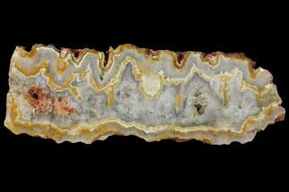 "Buy 8.9"" Polished Slab Kumarina Agate (New Find) - Australia - #132952"