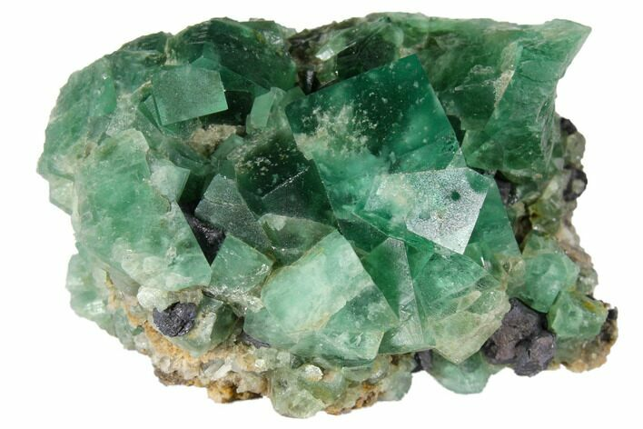 "1.9"" Fluorite Crystal Cluster with Galena-  Rogerley Mine"