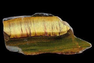 "5.3"" Marra Mamba Tiger's Eye Slab - Mt. Brockman (2.7 Billion Years) For Sale, #133067"
