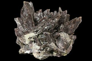 "4.7"" Axinite Crystal Cluster - Peru For Sale, #133013"