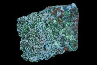 "1.6"" Light-Blue Shattuckite with Malachite - Tantara Mine, Congo For Sale, #134018"