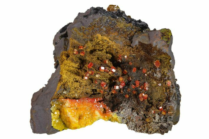 "2.2"" Gemmy Vanadinite Crystals on Goethite - Mibladen, Morocco"
