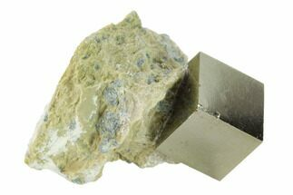 ".5"" Pyrite Cube In Matrix - Navajun, Spain For Sale, #132848"