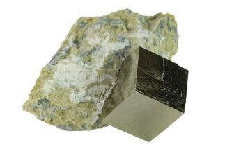 Pyrite - Fossils For Sale - #132858