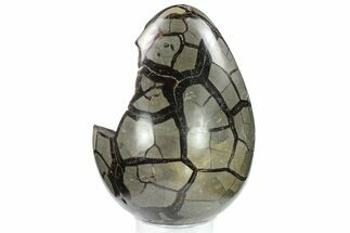 "7.7"" Septarian ""Dragon Egg"" Geode - Black Crystals For Sale, #134630"