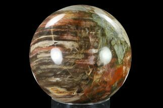 "Buy 5.95"" Colorful, Petrified Wood Sphere - Madagascar - #135325"