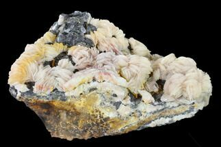Barite, Cerussite, Galena & Wulfenite - Fossils For Sale - #136275