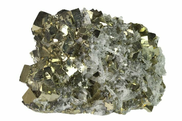 "4.4"" Cubic Pyrite & Quartz Crystal Association - Peru"