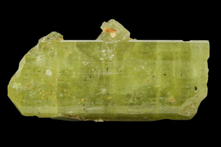 "1.45"" Gemmy, Yellow Apatite Crystal - Morocco"