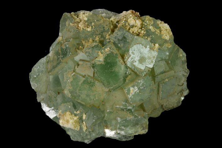 "1.5"" Green Fluorite Crystal Cluster - Fluorescent"