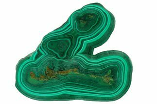 "Buy 4.5"" Polished Malachite Slab - Congo - #137062"