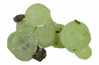 "2.1"" Botryoidal Prehnite and Epidote Association - Mali, Africa For Sale, #137309"