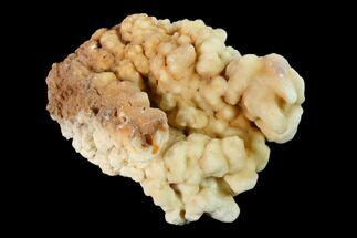 Aragonite & Calcite - Fossils For Sale - #137367