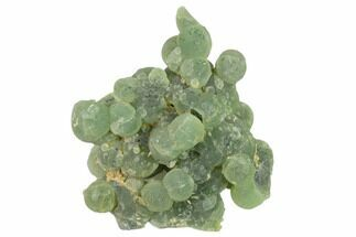 "Buy 5.1"" Botryoidal Prehnite with Epidote Inclusions - Mali, Africa - #137554"