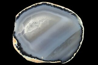 "5.9"" Polished Brazilian Agate Slice For Sale, #137669"