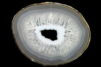 "Buy 6.2"" Polished Brazilian Agate Slice - #137671"