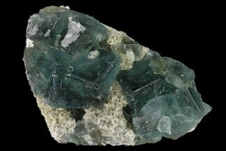 Fluorite & Quartz - Fossils For Sale - #138072