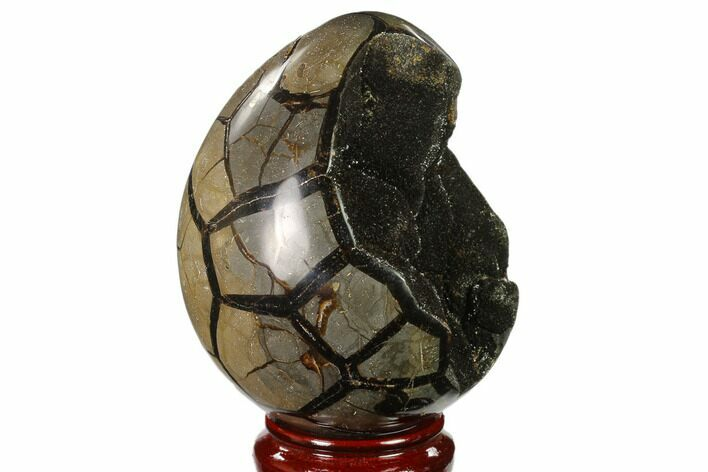 "6.4"" Septarian ""Dragon Egg"" Geode - Black Crystals"