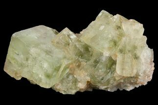 "1.8"" Light-Green, Cubic Fluorite Crystal Cluster - Morocco For Sale, #138236"