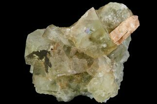 "1.8"" Light-Green, Cubic Fluorite Crystal Cluster - Morocco For Sale, #138242"