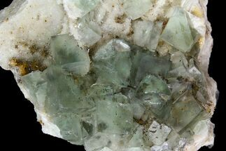 "3"" Sea-foam Green, Cubic Fluorite Crystal Cluster - Morocco For Sale, #138251"