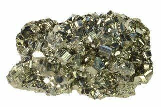 Pyrite - Fossils For Sale - #138132