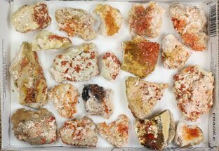"Lot: 2-3"" Bladed Barite With Vanadinite - 20 Pieces For Sale, #138191"
