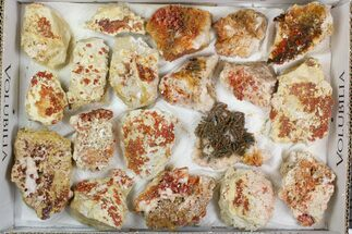 "Lot: 2-3"" Bladed Barite With Vanadinite - 19 Pieces For Sale, #138188"