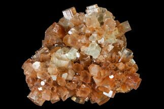 Aragonite - Fossils For Sale - #139236