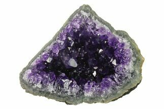 "4"" Dark Purple, Amethyst Crystal Cluster - Uruguay For Sale, #139481"