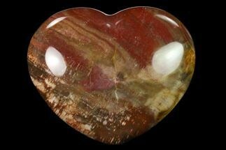 "3.6"" Polished Triassic Petrified Wood Heart - Madagascar For Sale, #139979"