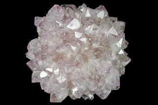 Quartz var. Amethyst - Fossils For Sale - #142062
