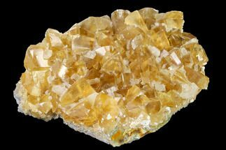 "3.3"" Lustrous, Yellow Calcite Crystal Cluster - Fluorescent! For Sale, #142370"