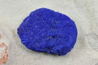 "Buy .6"" Blue Azurite Sun on Siltstone - Australia - #142753"