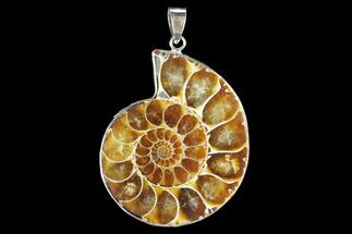 "1.7"" Fossil Ammonite Pendant - 110 Million Years Old For Sale, #142904"